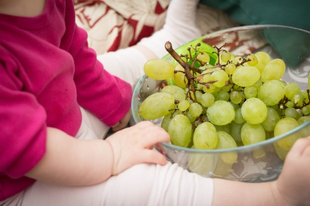grapes-531207_1920