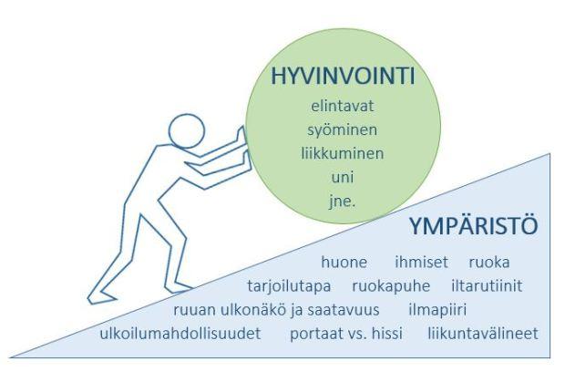 YMPÄRISTÖN VAIKUTUS HYVINVOINTIIN